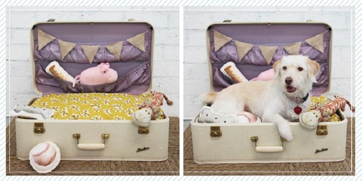 dog-bed-suitcase-DIY-5