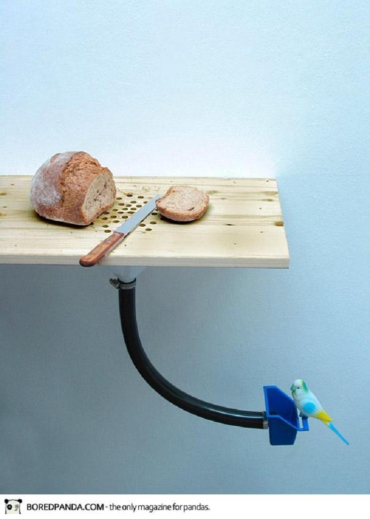 pod0066-cutting-board-bird-feeder-curro-claret-1